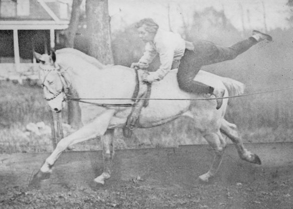 photograph of Josephine DeMott Robinson riding her horse